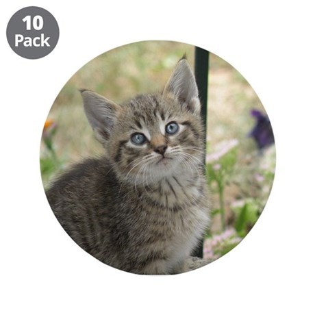 "Kitten 3.5"" Button (10 pack)"