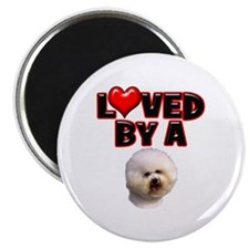 Loved by a Bichon Frise Magnet