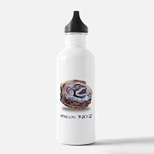Minnesota Rocks! Water Bottle