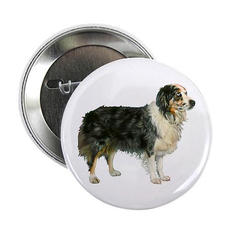 """Austrailian Shepherd Cool Stu 2.25"""" Button (10 pac"""