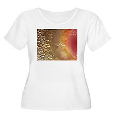 Conceptual Art T-Shirt