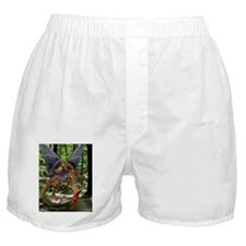 The Jabberwocky Boxer Shorts
