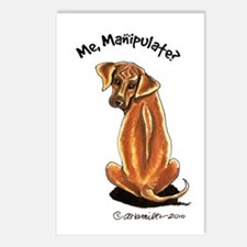 Rhodesian Ridgeback Manipulate Postcards (Package