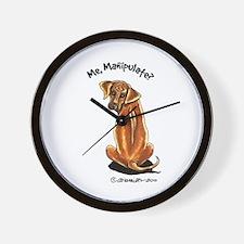 Rhodesian Ridgeback Manipulate Wall Clock