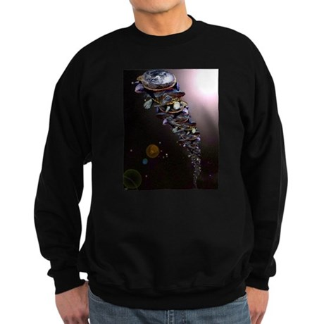 Turtles All The Way Down Sweatshirt (dark)