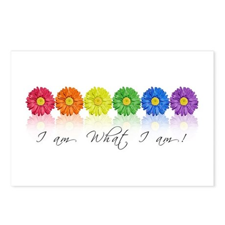 Daisy pride Postcards (Package of 8)