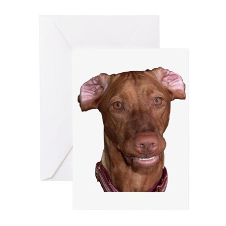 Silly Vizsla Smile Greeting Cards (Pk of 10)