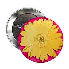 Gerber Daisies II Button