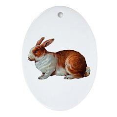 Pet Rabbit Oval Ornament