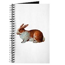 Pet Rabbit Journal