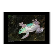 Chinese Gliding Frog Postcards (Package of 8)
