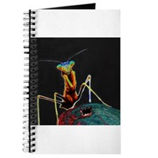 Solarized Preying Mantis Journal