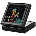 Solarized Preying Mantis Keepsake Box