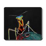 Solarized Preying Mantis Mousepad