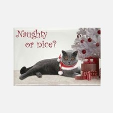 Cat Under Christmas Tree Rectangle Magnet