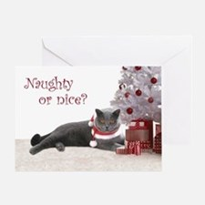 Cat Under Christmas Tree Greeting Card