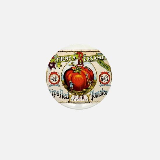 Cool Tomato Mini Button