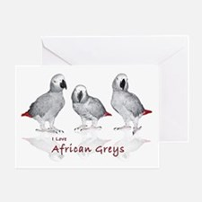 african grey parrots Greeting Card