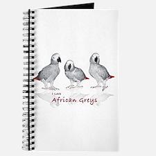 african grey parrots Journal