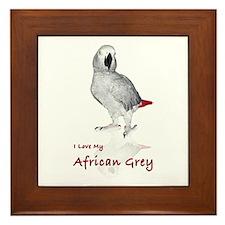 i love african greys Framed Tile