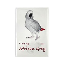 i love african greys Rectangle Magnet