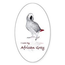 i love african greys Decal