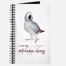i love african greys Journal