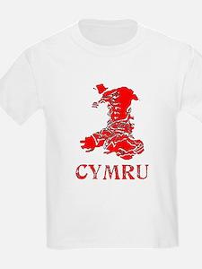 Kids CYMRU MAP Light T-Shirt