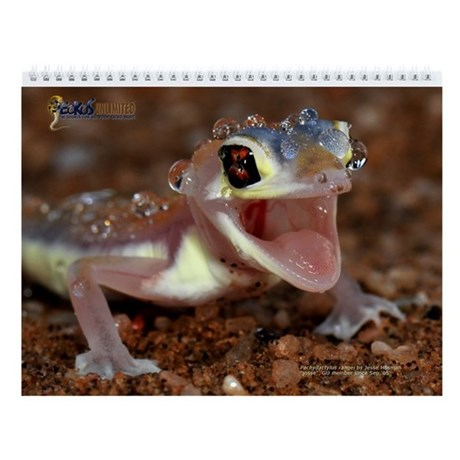 Geckos Unltd Wall Calendar (2011 Contest Photos)