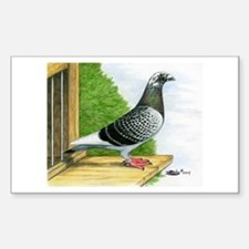 Racing Homer Pigeon Decal