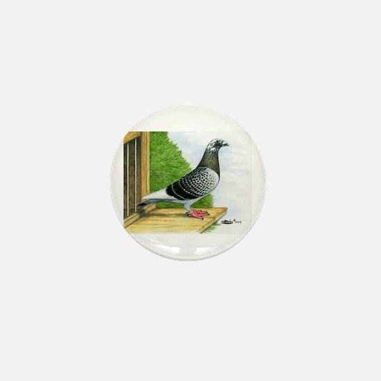 Racing Homer Pigeon Mini Button