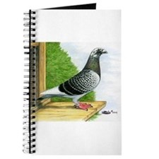 Racing Homer Pigeon Journal