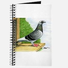 Racing Homer Pigeon Journal