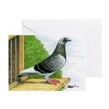 Racing Homer Pigeon Greeting Card