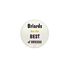 Briard Best of Breeds Mini Button (10 pack)