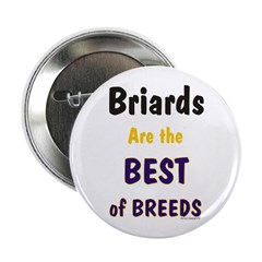 Briard Best of Breeds 2.25