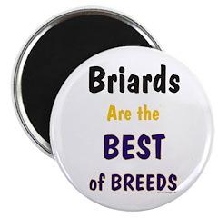 Briard Best of Breeds 2.25