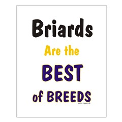 Briard Best of Breeds Posters
