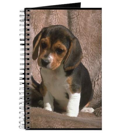 Beagle Puppy Photo Journal