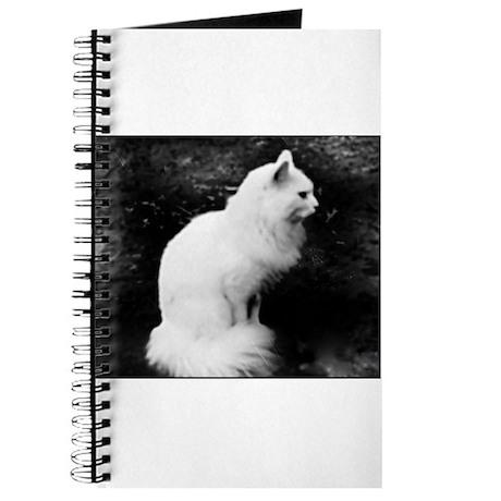Enchanting White Kitty Journal
