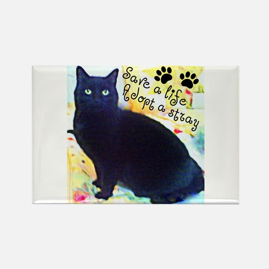 Stray Black Kitty Rectangle Magnet (10 pack)
