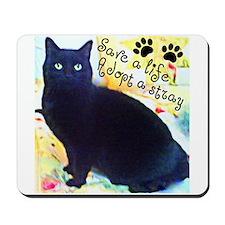 Stray Black Kitty Mousepad