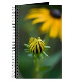 Black eyed susan journal Journals & Spiral Notebooks