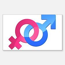 Openly Heterosexual Decal