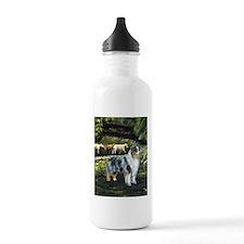 Aussie Blue Merle w/ Sheep Water Bottle