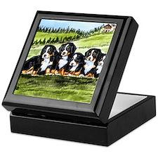 Bernese Moutain Dog Puppies Keepsake Box