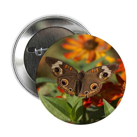 "Buckeye Butterfly Gift 2.25"" Button"