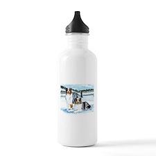 Austrailian Shepherd Blues in Water Bottle