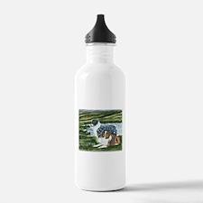 Austrailian Shepherd Blue and Water Bottle