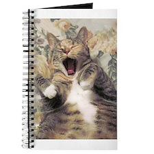 Cat Nap Interupted Journal